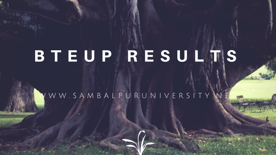 bteup results