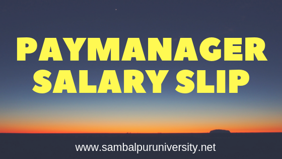 PayManager Salary Slip