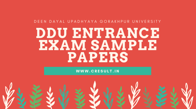 DDU Entrance Exam Sample Papers